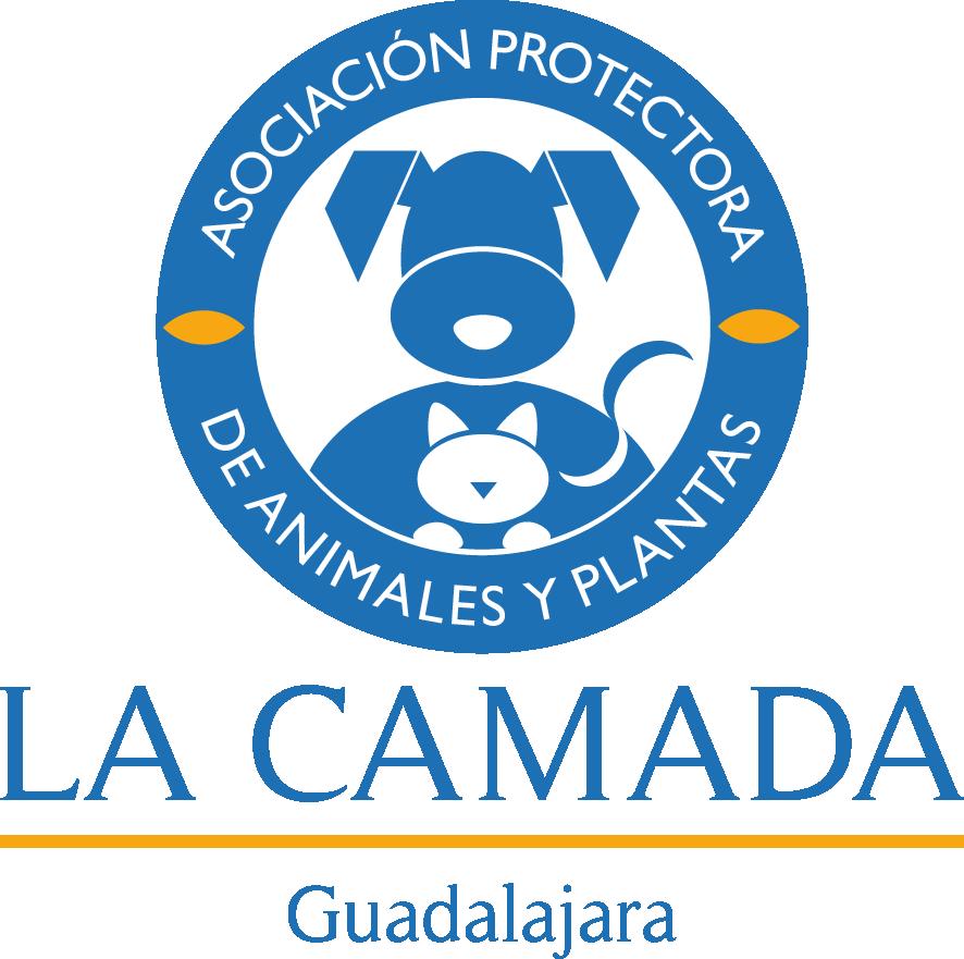 logo_camada