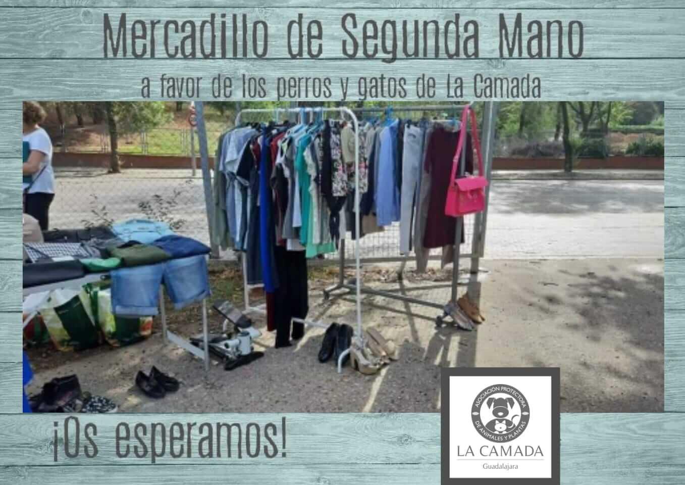 Mercadillo de segunda mano La Camada @ Mercadillo de los sábados Guadalajara