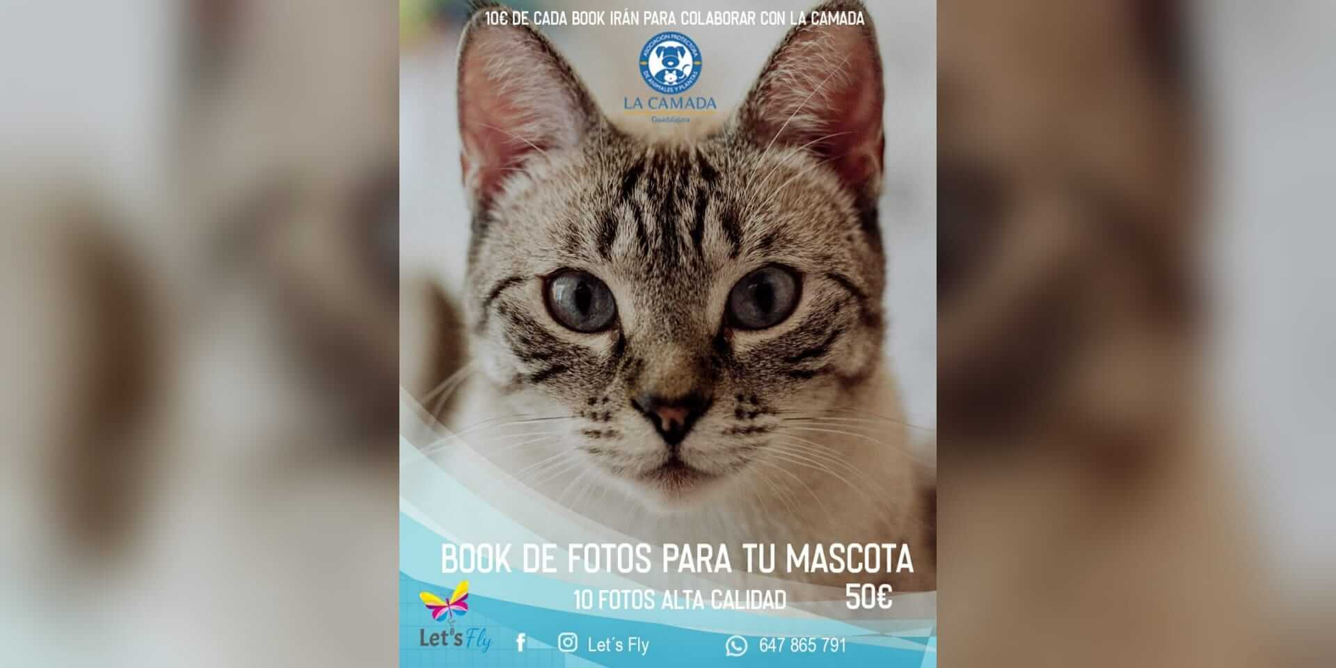 Book solidario