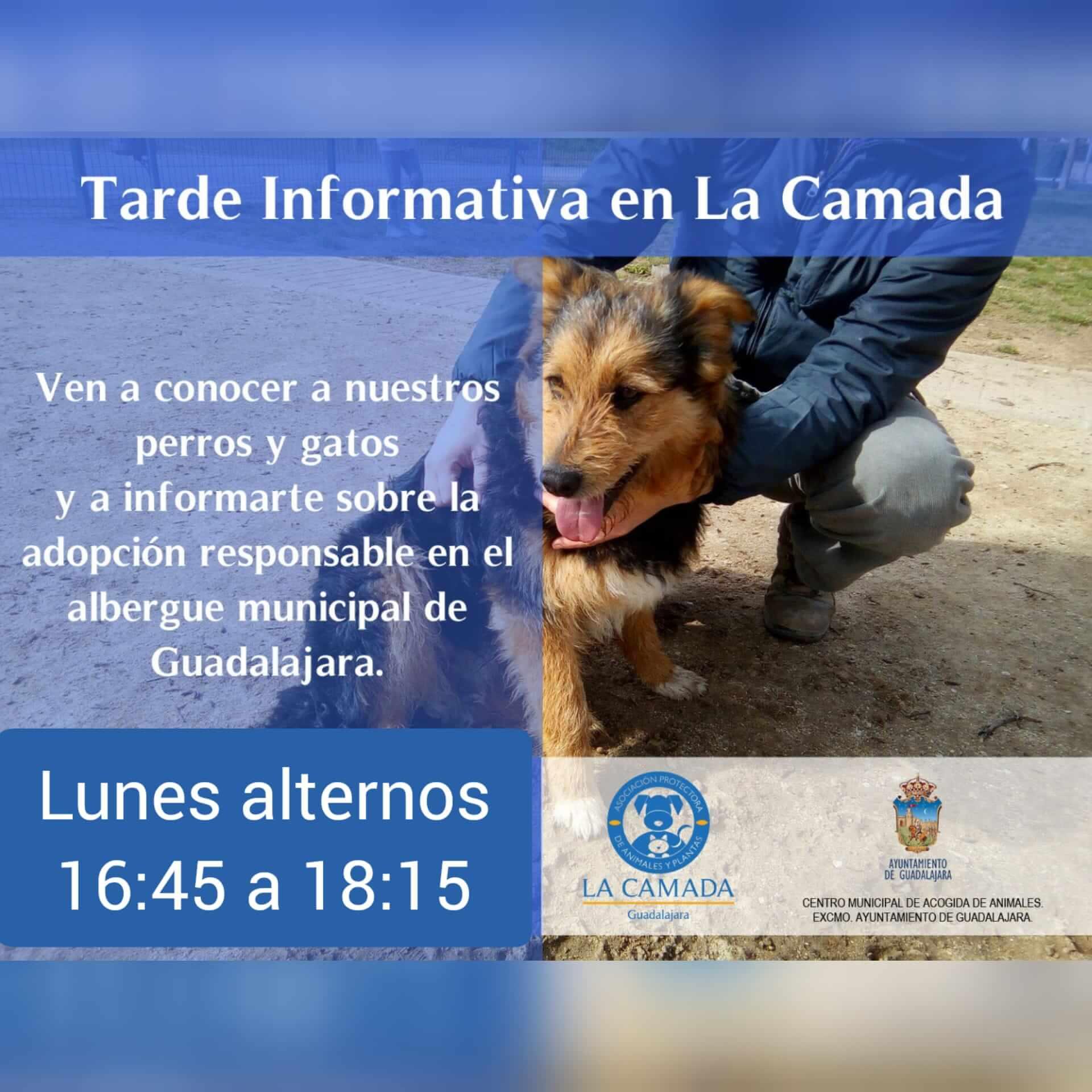 Tardes Informativas en el albergue de La Camada @ La Camada