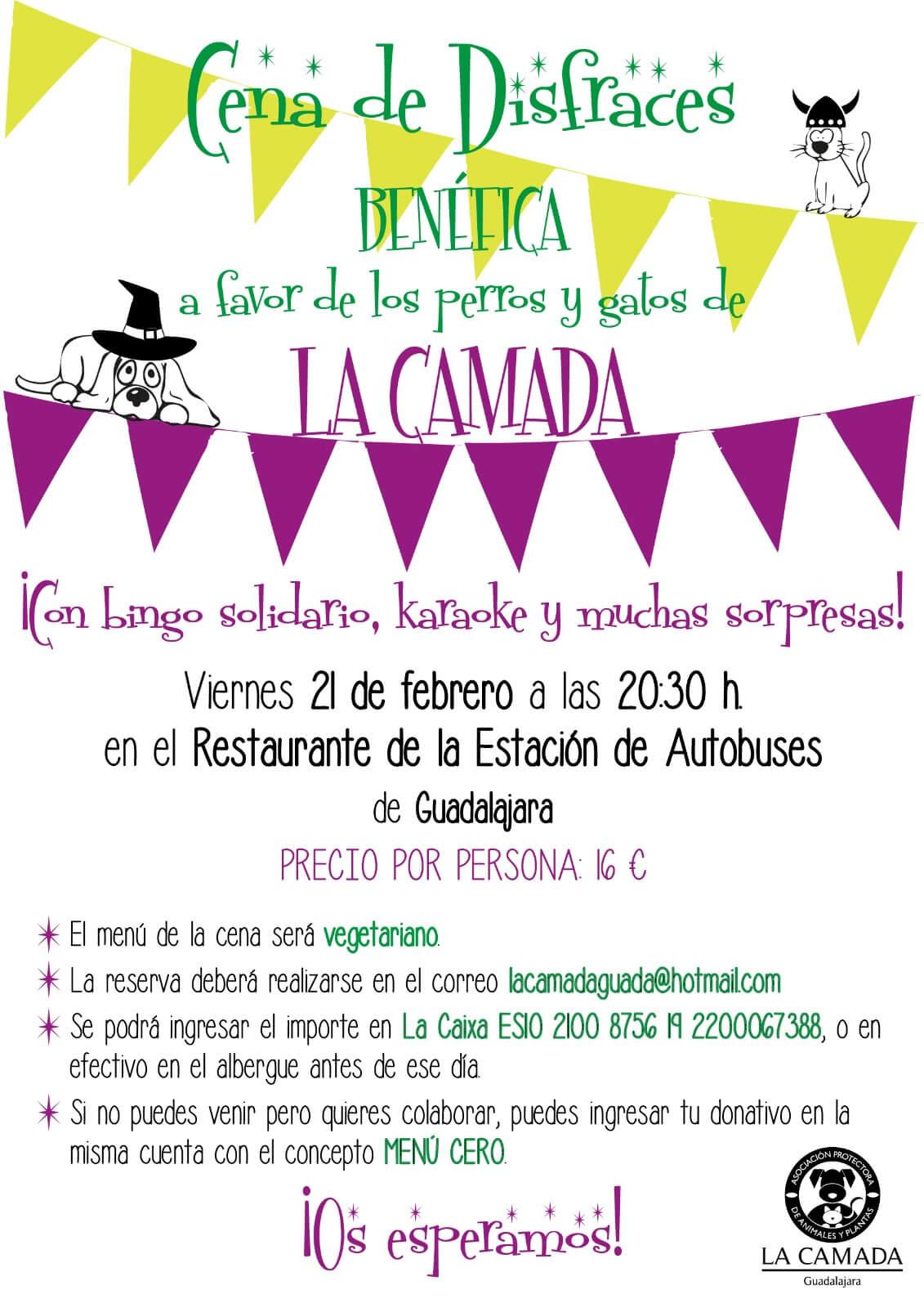 Cena Benéfica de disfraces La Camada @ Estación de autobuses de Guadalajara