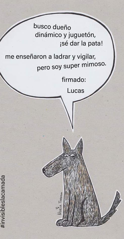 #HazRealidadSuSueño